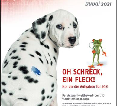 Oh Schreck, ein Fleck! – Die IJSO im Detail mit Anmelde-Workshop